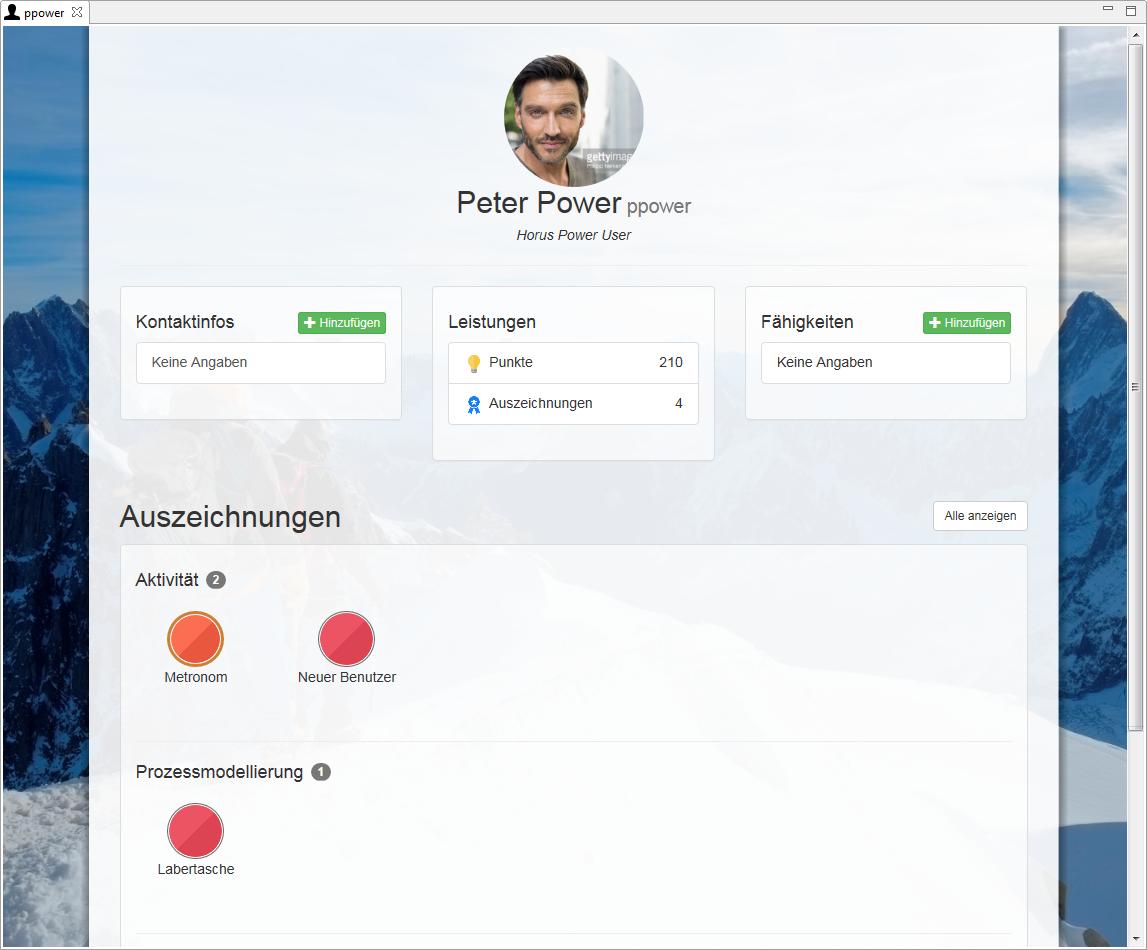 Abbildung 2: Erweitertes Nutzerprofil und Status-Ansicht